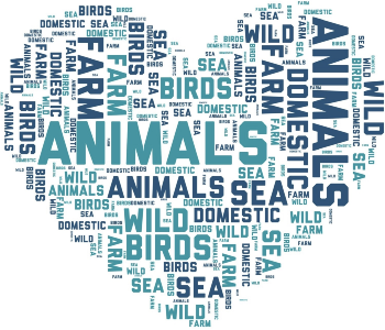 Devoted To Animals