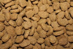 Dog biscuits as good nutrition