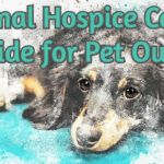 Animal Hospice Care - A Guide for Pet Owners