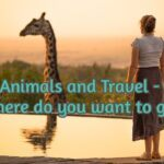 Animals and Travel - where do you want to go?