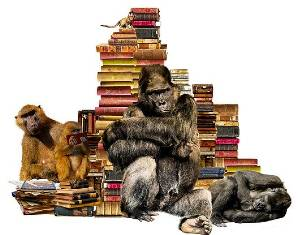 Gorillas with short animal stories