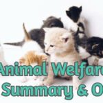 The Animal Welfare Act 2006 Summary & others
