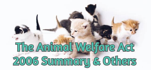 animal-welfare-act-2006
