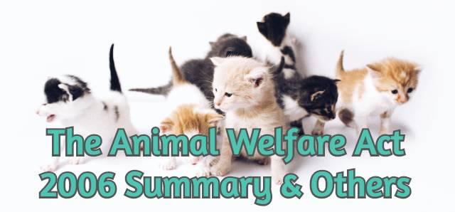animal-welfare-act-2006