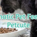 Automatic Pet Feeders - Petcute