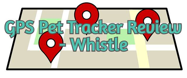 gps-pet-tracker-whistle-review