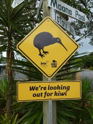 Kiwi Bird Road Sign