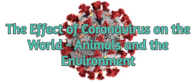 photo-of-the-effect-of-coronavirus-on-the-world