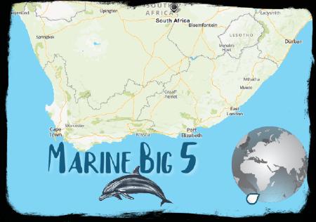 Marine Big 5 map