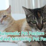 Automatic Pet Feeders - SureFeed Microchip Pet Feeder