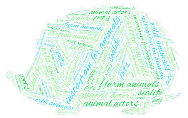 instagram-for-animals-hedgehog-word cloud