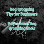 Dog Grooming Tips For Beginners - Professional Dog Grooming Tools