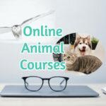 Online Animal Courses