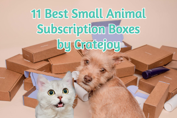11-best-small-animal-subscription-boxes-by-cratejoy-feature