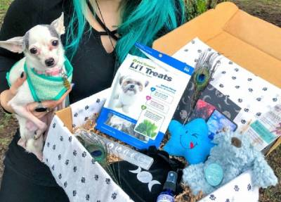 Mystic Pup Best Small Animal Subscription Box